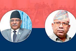 कांग्रेस र जनता समाजवादीले संयुक्त आन्दोलनलाई अस्वीकार गरेपछि दाहाल–नेपाल समूह एक्लै सडकमा