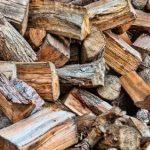 वन समूहले बाँड्न सकेनन् चिसोमा काठ दाउरा