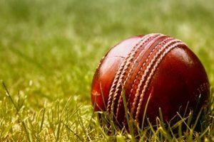 त्रिकोणात्मक ट्वान्टी–ट्वान्टी  क्रिकेट श्रृंखला आजदेखि शुरु हुँदै