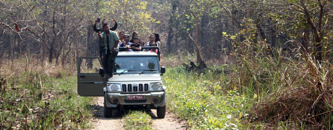 चितवन राष्ट्रिय निकुञ्ज घुम्ने पर्यटकको सङ्ख्यामा कमी