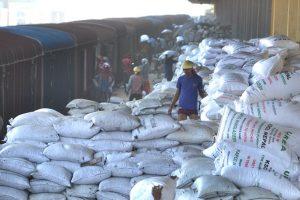 बङ्गलादेशबाट नेपाल आइपुग्यो ५२ हजार मेट्रिक टन युरिया मल
